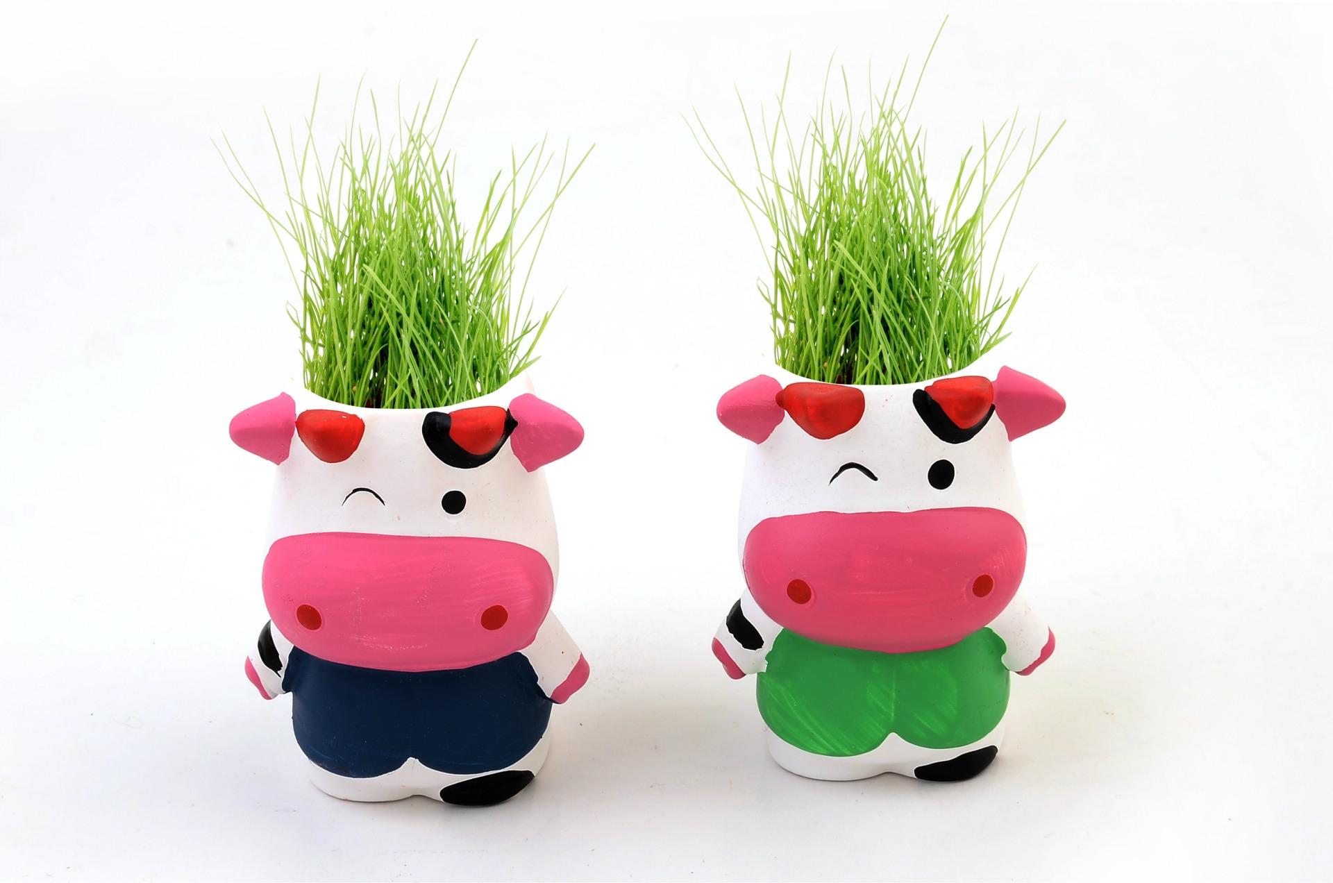 迷你盆栽 迷你植物 桌面盆栽 陶瓷娃娃牛
