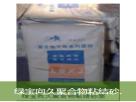 北京水泥基防水涂料 永久性防水 耐腐蚀 不老化实用性能高