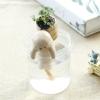 ecoey工艺品礼品陶瓷摆件 微景观植物
