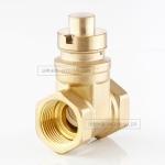 沃希米勒 廠家直銷 黃銅防盜閘閥 磁性鎖