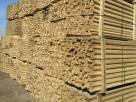 恒之韵的出名的绿化支撑杆批发厂家品质有保障