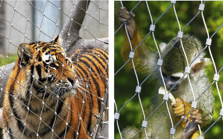 钢丝绳网,动物园围网【低价销售,成本经营